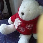 White teddy bear with a red Jumper was FOUND on a West London Bus today #london #bus #lost #teddybear http://t.co/lOM756T7F6