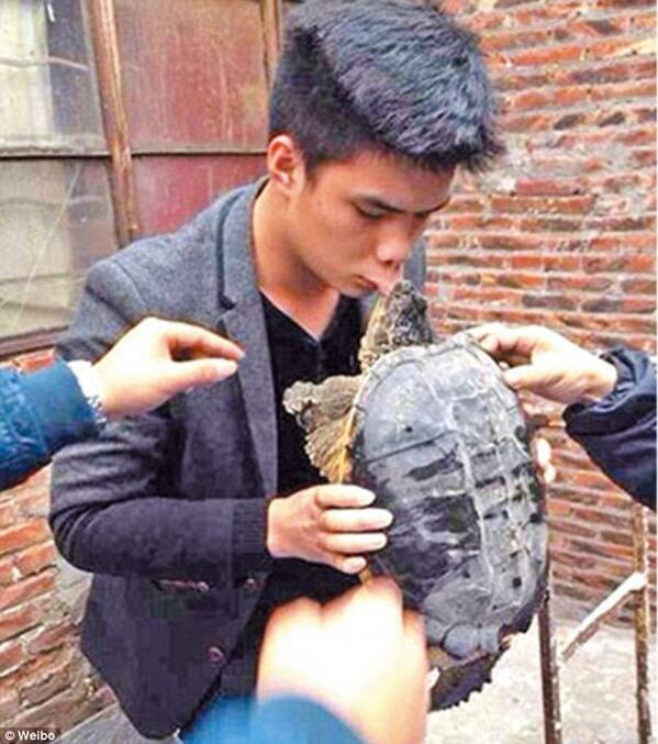 أراد أن يقبلها .. فقبلته بحراااااااااارة هههههه You should never kiss a snapping turtle http://t.co/JbNbvyZRrW  http://t.co/Hph9SDgFPU