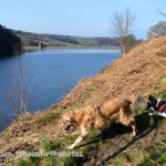 Dog days of Summer (but taken TODAY!) at Holme Styes reservoir #HolmeValley #ilovehd #Holmfirthhour #Holmfirth http://t.co/W2kJK54ZDE