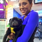RT @HamiltonPug: Me and my buddy @RobinRoberts in the new #SocialSquare at Good Morning America. @GMA http://t.co/679fh6LWlA