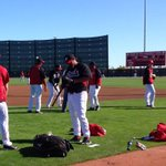 RT @Reds: Another Monday at the office. #SpringTraining http://t.co/fbIvHg5R5w