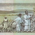 "RT @MyUglyMustache: Smh. ""@Brianmbunde: #dead RT @Karareiy: Is that you @Lupita_Nyongo PICKING COTTON ON KENYAS 200 SHILLING NOTE? LOL! http://t.co/24Cbf4MXsM"""