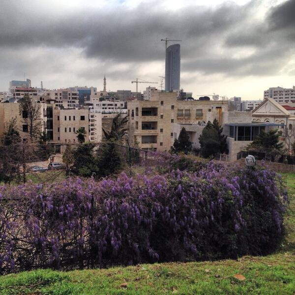 Boom and bloom, Amman http://t.co/r4F4sdMJ9p