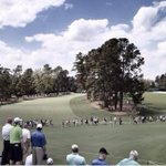 PSA: 31 days until Augusta. http://t.co/YrPN6DpF6J