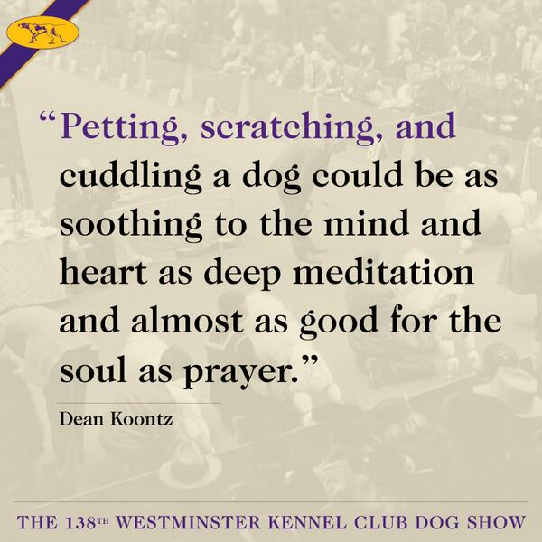 Author Dean Koontz about sums it up. RT if you agree. http://t.co/gcFn0UtEXm
