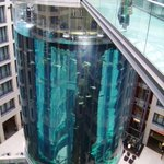 The aquarium elevator. (Berlin, Germany) http://t.co/nYDrS93n1M