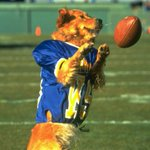 BREAKING: NY Jets have just signed stud free agent receiver. http://t.co/oIIJoHCUDK