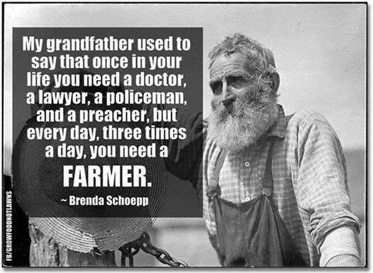 Indeed RT @ADevotedYogi please #share if you agree with a grandfather's #wisdom http://t.co/IwMfcHUdS8