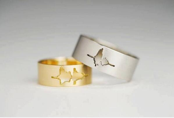 RT @ScienceWTF: A couple got married using rings with a waveform of their own voice saying 'I do'. http://t.co/CgeC0AuIWR