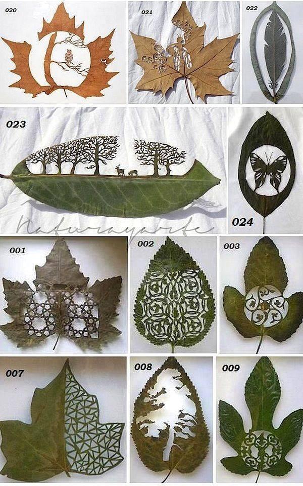 Amazing Leaf Art by Lorenzo Duran http://t.co/cl5JFhN6fA