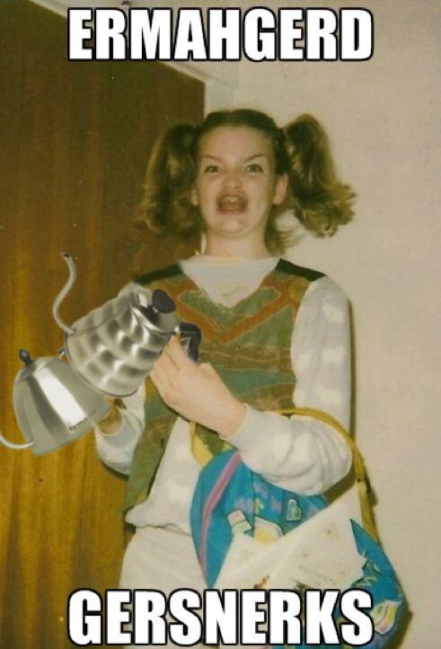 Why a good kettle matters, aka ERMAHGERD GERSNERKS!: http://t.co/VyXhzs8Ysk http://t.co/DYJjaXJMSv