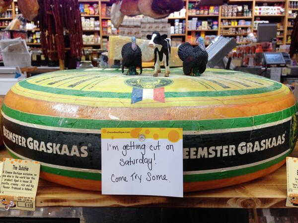 150 lbs, aged 2 years, 1-of-a-kind in CDN, Beemster Graskaas.  Cutting it open TODAY @ 1 pm!! @AfrimPristine http://t.co/8q97mNl7dv
