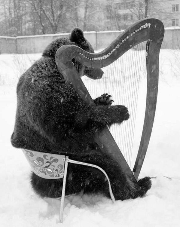 A Russian bear plays the harp http://t.co/vrD7UARZnu
