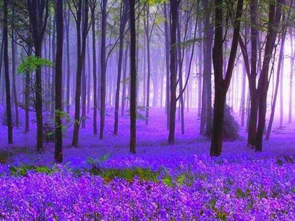 Spring. http://t.co/euYX7jU25z via @ZAGrrl @LUKIKA #HappyAlert