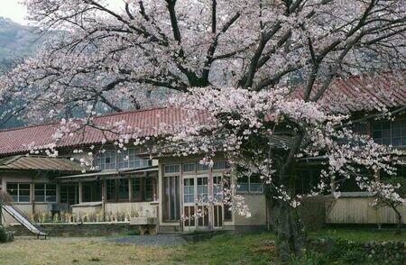 自転車乗りが白石とか定峰とか行ったついでに行ったら面白い場所その1。「のんのんびより」のモデル、小川町立小川小学校下里分校。桜の季節だけ校庭に出入りできます。 http://t.co/RCLTRyPsQf