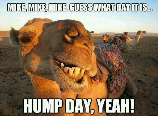 Good Morning gamers. You know what day it is, don't you. http://t.co/RcCjT4wB9q