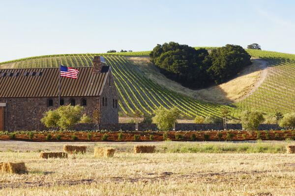 "Retweet this if you ""heart"" Paso Robles as much as we do! @ninerwine http://t.co/jtq77VsBE8"