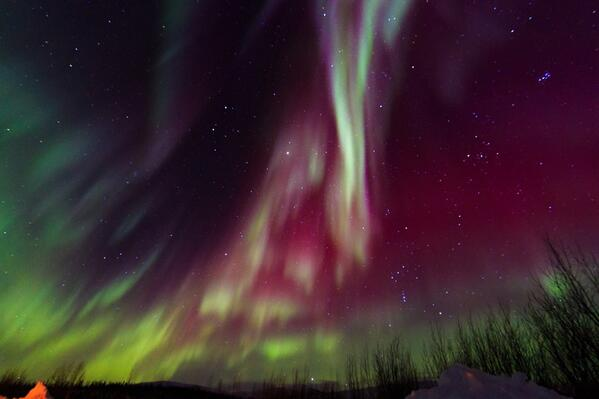 Spectacular northern lights earlier this week in #Alaska by Wynsong Peters. @BLMAlaska http://t.co/qjkWIBNXTD