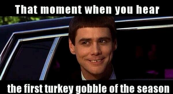 Yep that is the exact look I get when I hear that first gobble!! #TurkeySeason http://t.co/LT9XcrV1rd