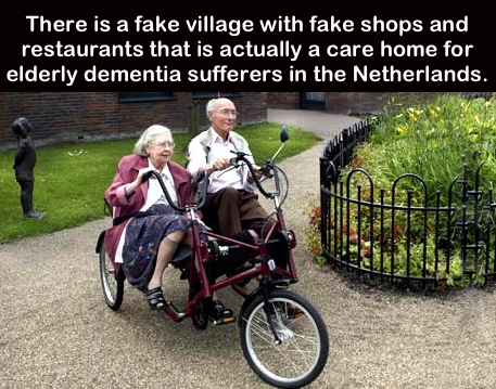 A much more dignified way to look after the elderly. http://t.co/062XVvCCWF