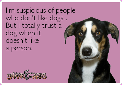 wooWOOF #Trust your dog's instincts furriends! http://t.co/fDbbtHcud7