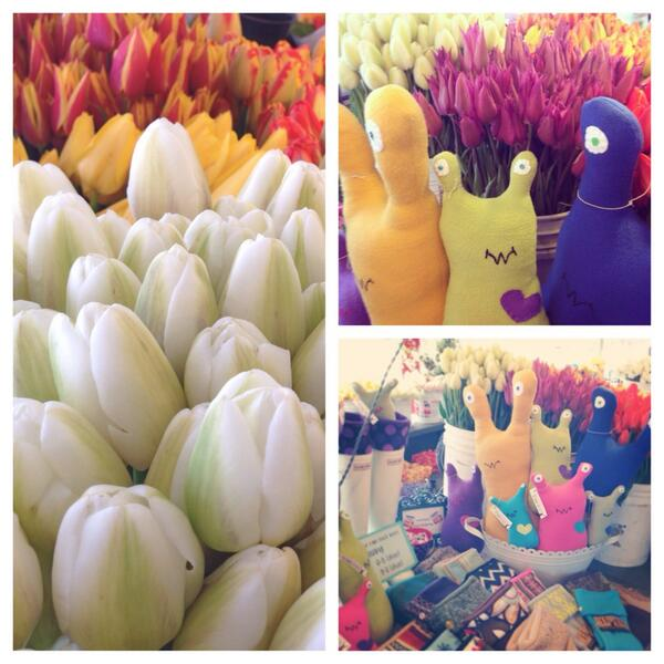 Tongass the SLUG stuffed animal feeling right at home in the tulips down at #PikePlaceMarket today! http://t.co/5XaeuQTkTa