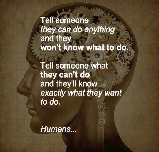 Humans! http://t.co/GN9AnrHM2Y