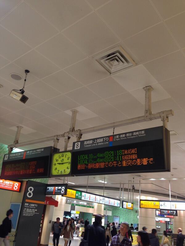 東武日光線、牛と衝突で遅れてるw http://t.co/2NtV6IWww3
