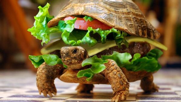 Из России «депортируют» гамбургер как символ западных ценностей (на здоровье!) http://t.co/LXCwb6SKJo #РСН #Гамбургер http://t.co/0nVP80yJkM
