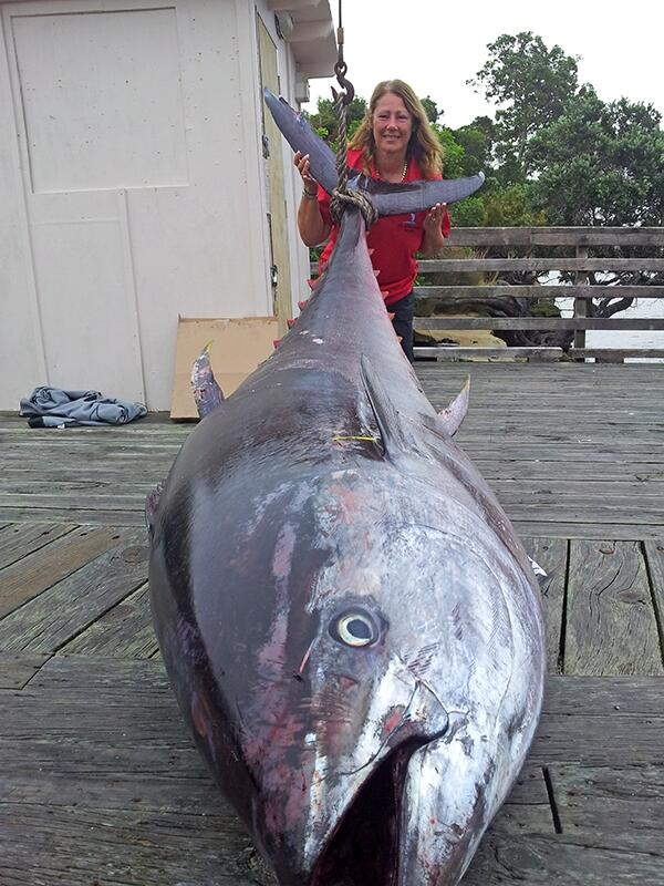 Have a look at this potential world record Pacific bluefin tuna. It's massive! - http://t.co/CLj1uQtdAe http://t.co/zqJ4yHQ3VY