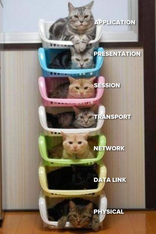 Once again, the OSI network model, with cats! Feel free to use in your next preso: http://t.co/9Xhs2P3lT9 http://t.co/S6VsW6krtE