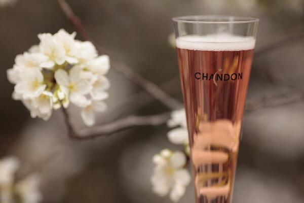 Blossoms and bubbles. #FlowerPower http://t.co/7rlQZi7689