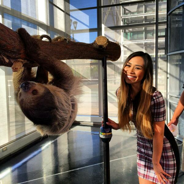Jessica Sanchez hanging around with a sloth from the Dallas Zoo! http://t.co/vptfVWa8gZ