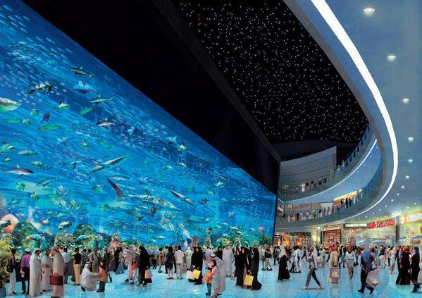 'Dubai Aquarium' One of the largest tanks in the world! http://t.co/3bThaAamrn