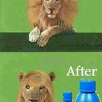 The Importance of Hair oil... lol