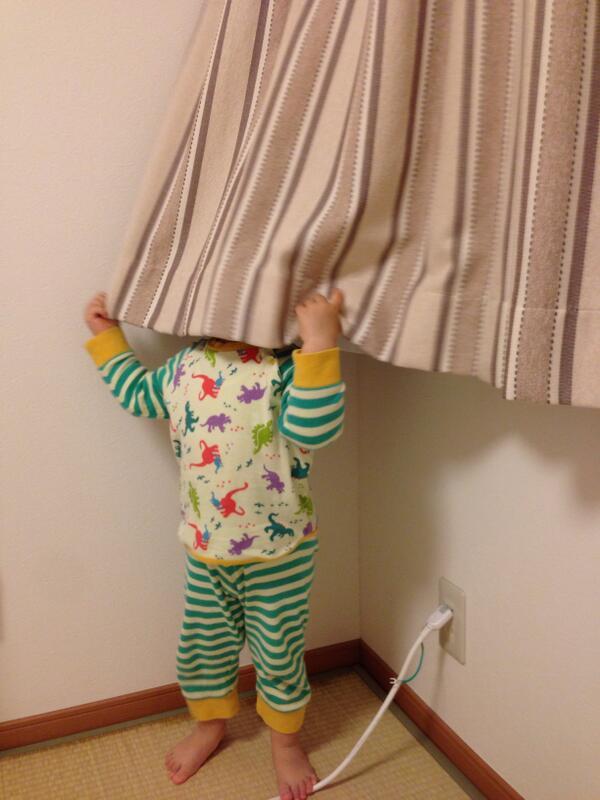 隠れんぼのプロかもしれない。全然分からない。 http://t.co/7SA7FgxXMk