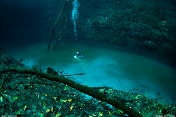 This is an underwater river in Cenote Angelita, Mexico http://t.co/KKhkX6CUz6