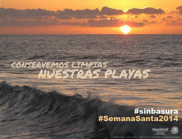 Playas de México son lugar de reproducción de distintas especies. En #SemanaSanta2014 ¡Cuídalas! @SEMARNAT_mx http://t.co/wjSFBthbD0
