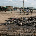 Please @BarackObama help stop the killing of poor civialians in the #SouthSudanWar http://t.co/6OfFrcueVn