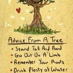 Advice from a tree on #EarthDay http://t.co/2lK12OyfYV