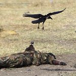 RT @kariukimwangi: When vultures are having a field day feeding on fellow human beings we are damned #ListenToSouthSudan @Donsarigo http://t.co/iGUQW8hrMT