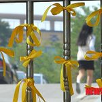 RT @metempirics: Yellow ribbons on Danwon high schools gate. A girl student is passing http://t.co/Pk9EUwUMVq If they lived ...#Sewol http://t.co/h8QVm3nwWr