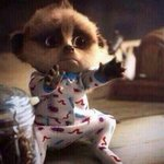 When bae is about to leave 😿 http://t.co/aoRN6djCj1