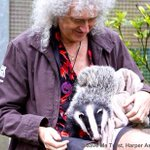 RT @brianmaycom: GET VOTING TROOPS !! @DrBrianMay NOMINATED IN OBSERVER ETHICAL AWARDS @guardian http://t.co/3KoTdpd91V http://t.co/blqQeRZDOO