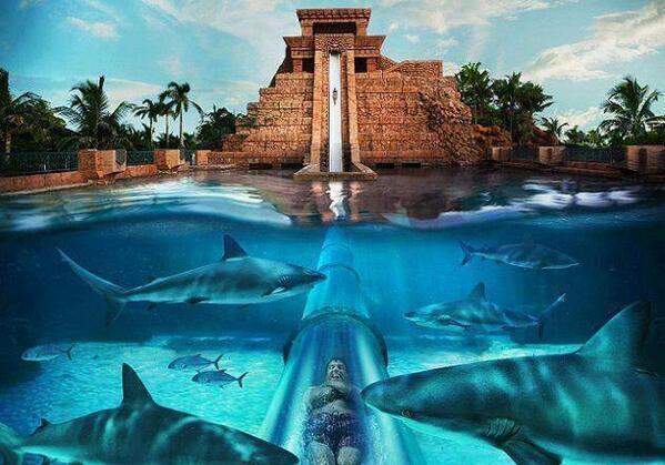 Water slide at the Atlantis Resort, Paradise Island, Bahamas. http://t.co/xLfQ0LJ4VR