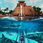 RT @TheMindBlowing: Water slide at the Atlantis Resort, Paradise Island, Bahamas. http://t.co/xLfQ0LJ4VR