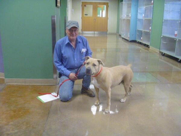 Today, after almost 70 days in the shelter, Mama found her forever home! #adopt http://t.co/GBWkCi3iZW