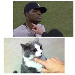 RT @MetsKevin11: Just checking my cat for pine tar http://t.co/18CMxErGPQ