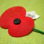 RT @we_mow_lawns: If you can, please text poppy to 4462 to donate $3 to @RSA_National #LestWeForget http://t.co/UWaNOwWbn8