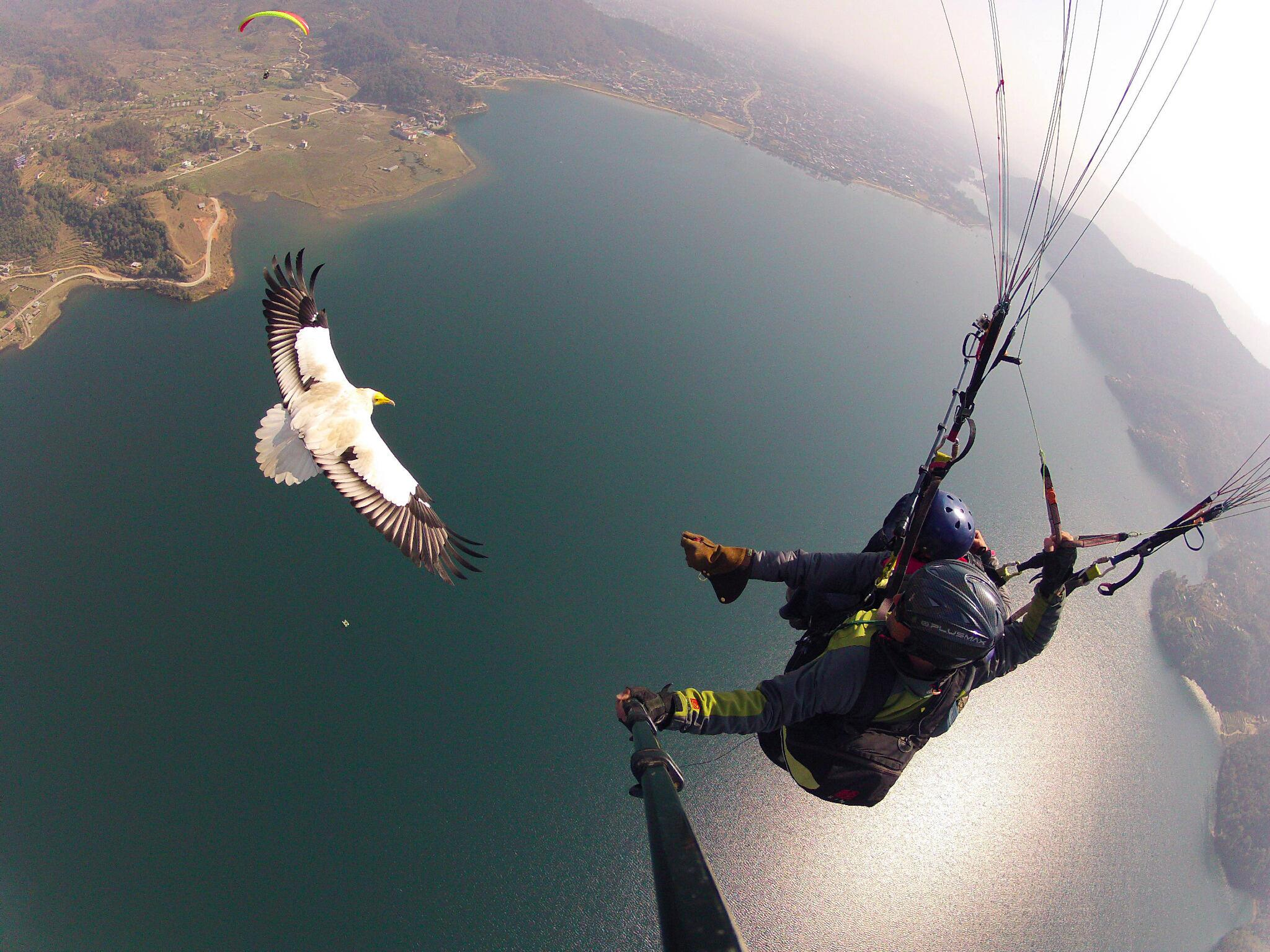 Photo of the Day! @parahawking in Nepal. As cool as it sounds. http://t.co/T0EWsq50Fa